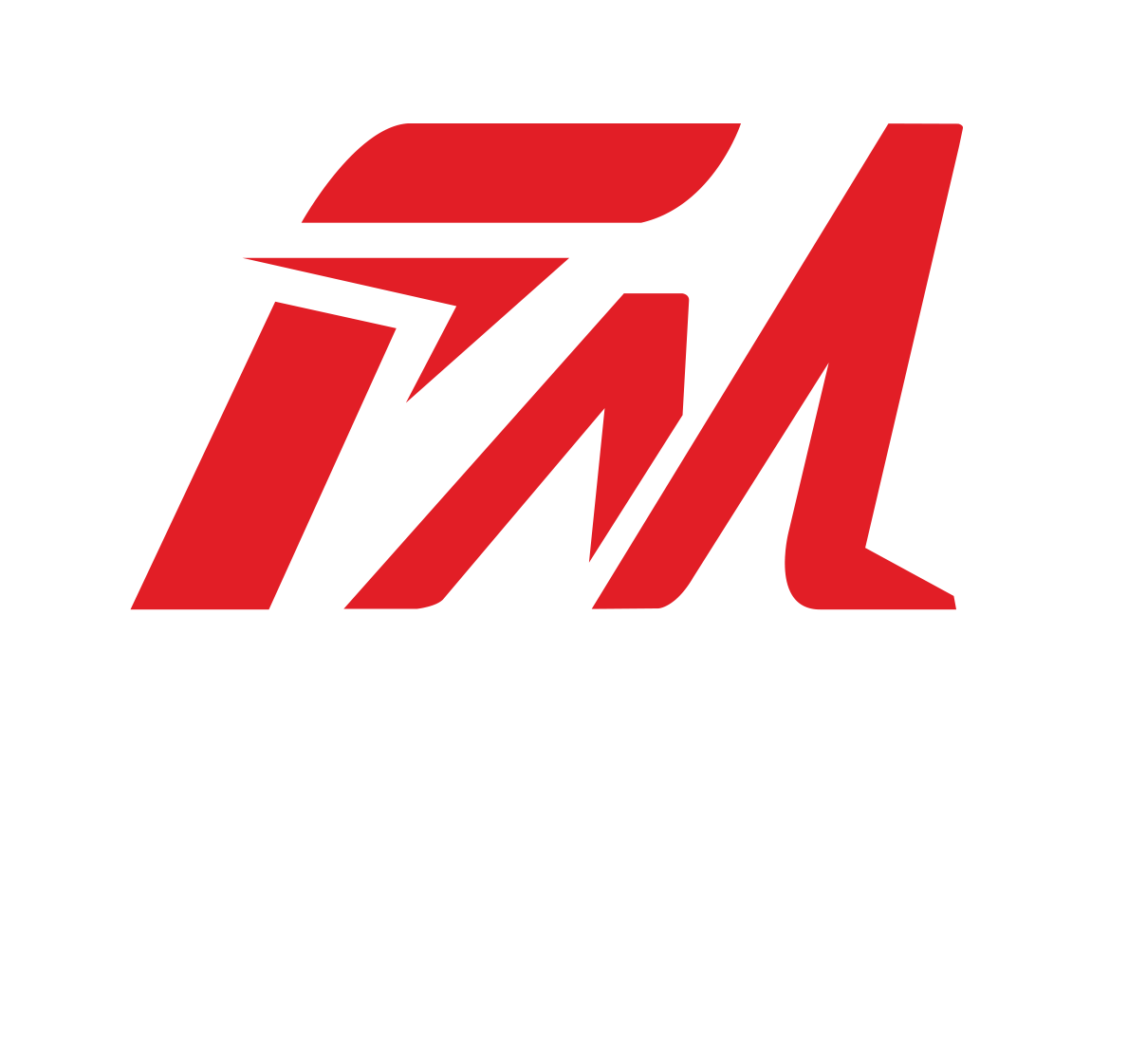 FITNESS MOVEMENT GYM